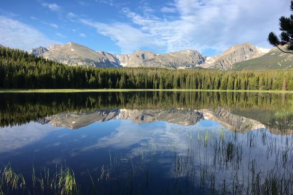Bierstadt Lake RMNP