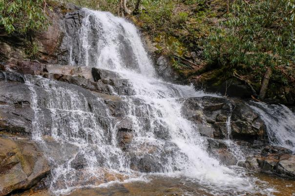 Laurel Falls in the Smokies