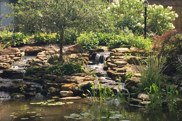 Avon Gardens waterfall