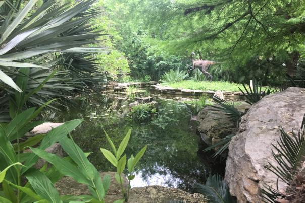 Zilker Botanical Garden. Credit Christine Felton, Visit Austin.