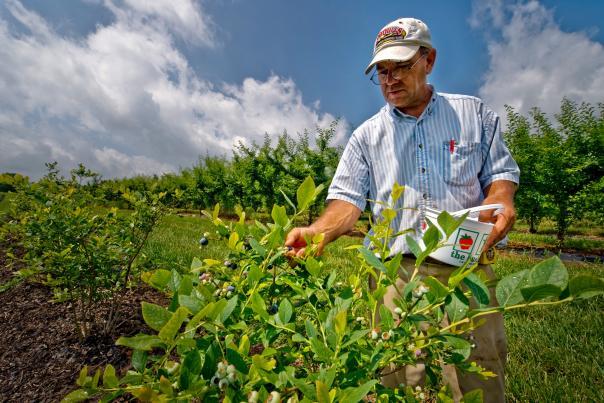 FARMS AND FARMERS MARKETS