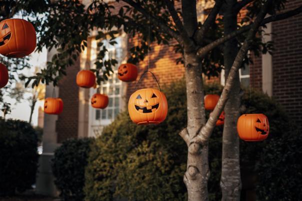 Fall pumpkins at Visitor's Center