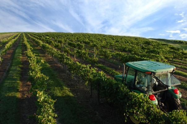 Lakeridge Winery & Vineyards tractor