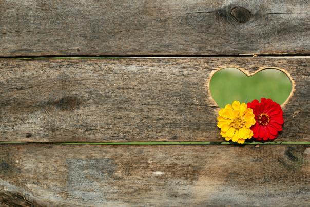 Valentine's board promo