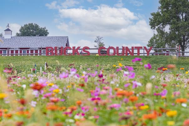 Bucks County sign