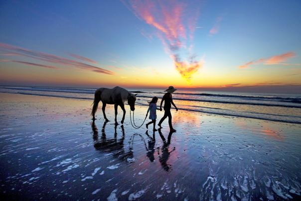 The rising sun on the Atlantic Ocean lights the sky in cotton candy pink and blue as a father and daughter walk a pony on the beach.