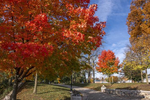 Fall at Beutter Park in Mishawaka