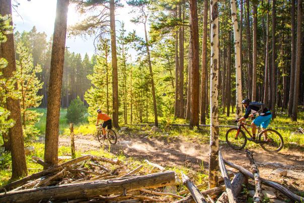 Friends Mountain Biking Through Casper Forest