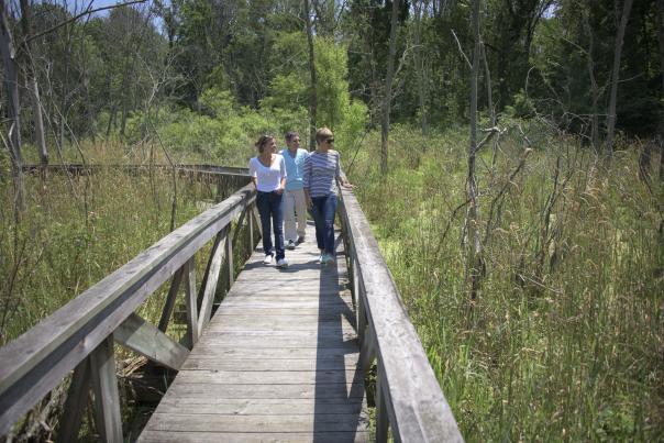 Visitors walk on the boardwalk at Spice Lake Nature Preserve