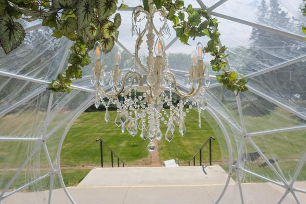The view from transparent dome to the gardens with a chandelier in the foreground