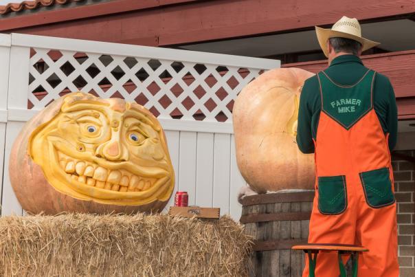 Pumpkin Festival 2017