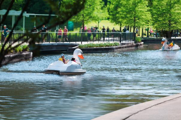 Swan Boats and Runner on The Waterway