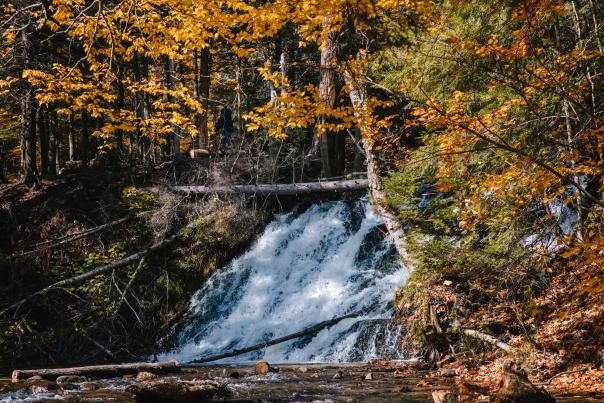 Morgan Falls in the fall