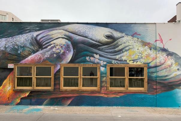 giant humpback whale mural