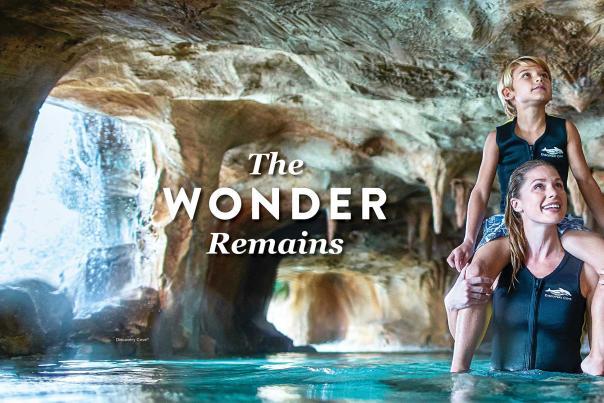 The Wonder Remains desktop banner