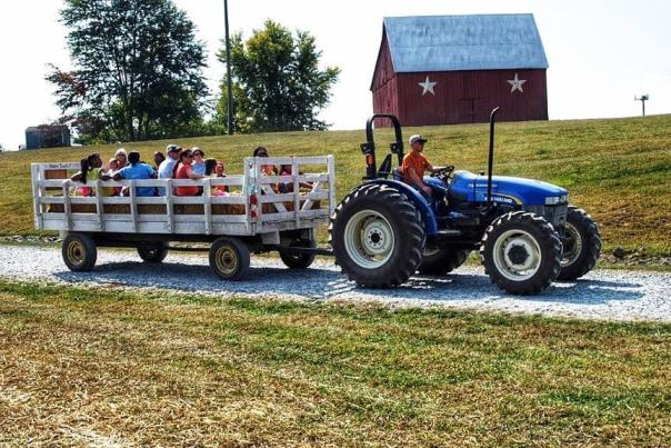 Tractor pulls people in a wagon an a farm
