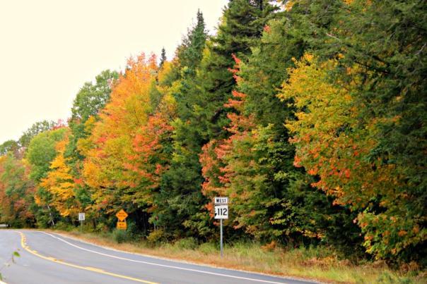 Route 112 Foliage