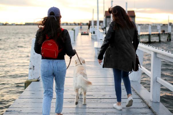 Two Woman Walking A Dog Down Bowen's Wharf In Newport, RI