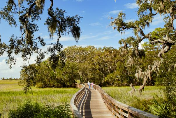 Jekyll Island Biking Trail