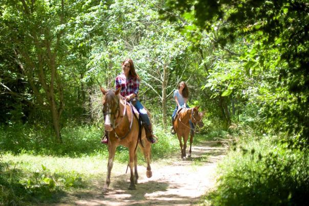 Natural Valley Ranch horseback ride