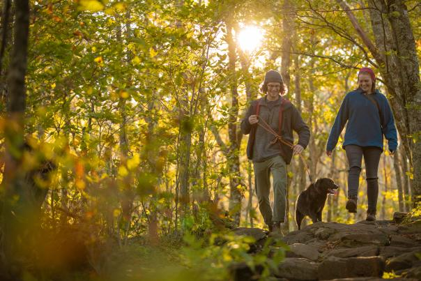 Man and woman hiking in the woods with a medium sized black dog on a leash between them.