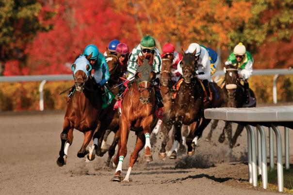 Jockeys on horses race around the corner of a dirt track. The fall foliage is a vibrant, flaming orange and red in the distance.