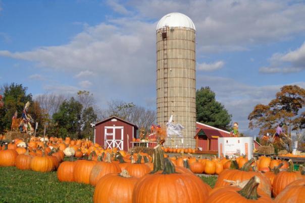 Hellerick's Family Farm