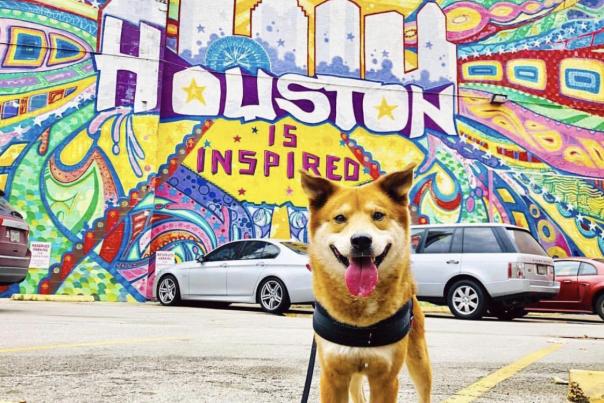 Houston Inspired Mural
