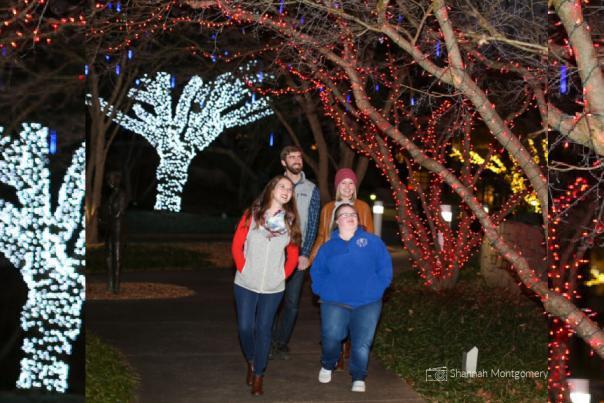 State Botanical Garden Holiday Lights header