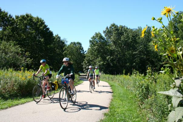 Four bikers bike down a sunny, green trail with yellow flowers in the foreground
