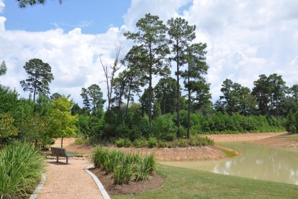Monarch Park in Creekside Park