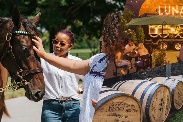 Horse, Foodie, Bourbon vibe images.