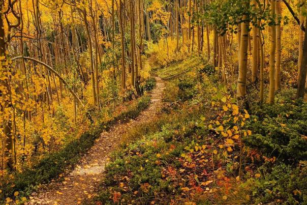 Richmond Trail in Late September