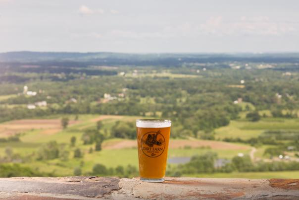 Dirt Farm Beer View