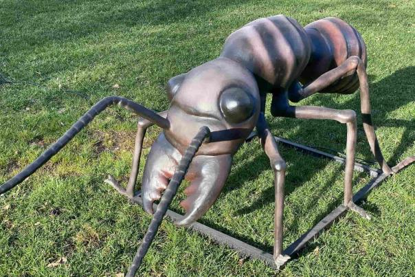 Anne the Ant at Botanica's Big Bugs Exhibit