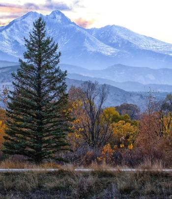 Fall in Longmont