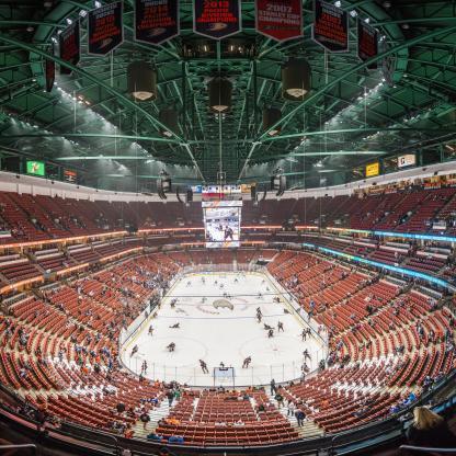 Anaheim Ducks Game at Honda Center