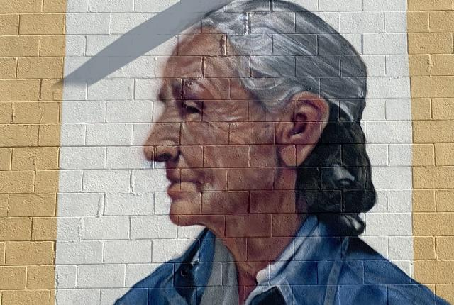 Georgia O'Keeffe Mural Las Cruces
