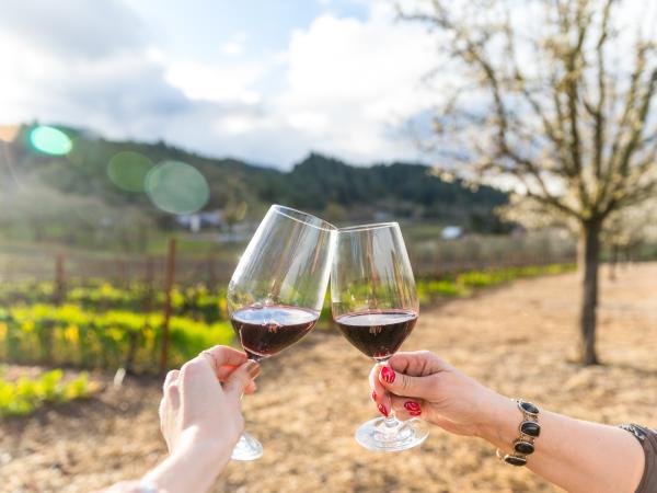 Toasting Glasses of Cabernet at Napa Valley Vineyard