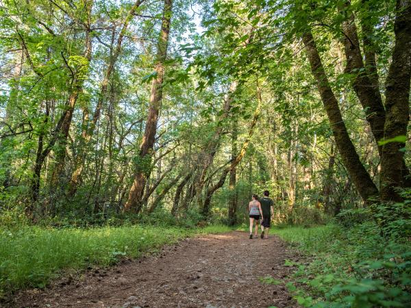 Hikers enjoy the tree-lined trails of Bothe State Park in Napa Valley.