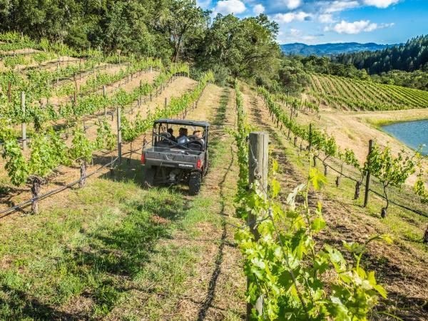 ATV Winery Tour in Calistoga, Napa Valley