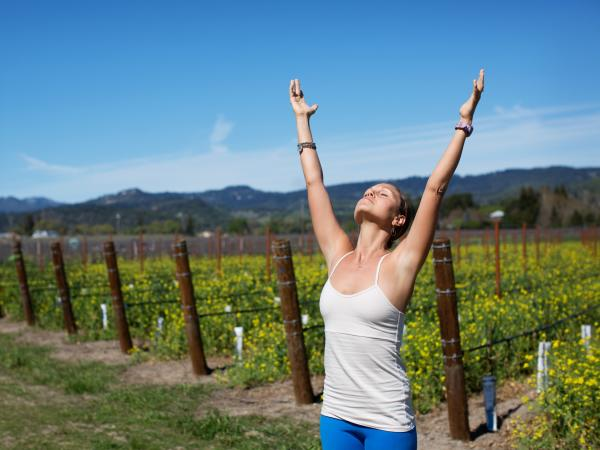 Napa Valley Yoga Wellness