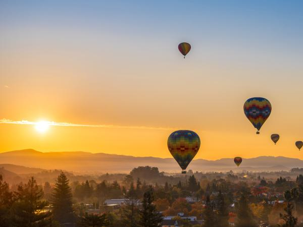 Hot Air Balloons over Yountville