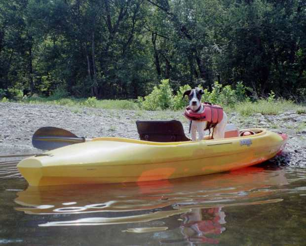 Pocono Mountains Pet-Friendly Attractions