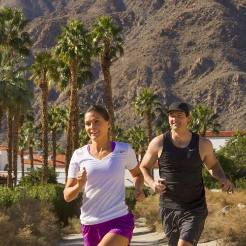Bump and Grind Hike in Palm Desert