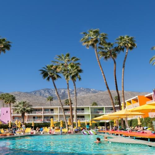 Pool with palm trees at The Saguaro