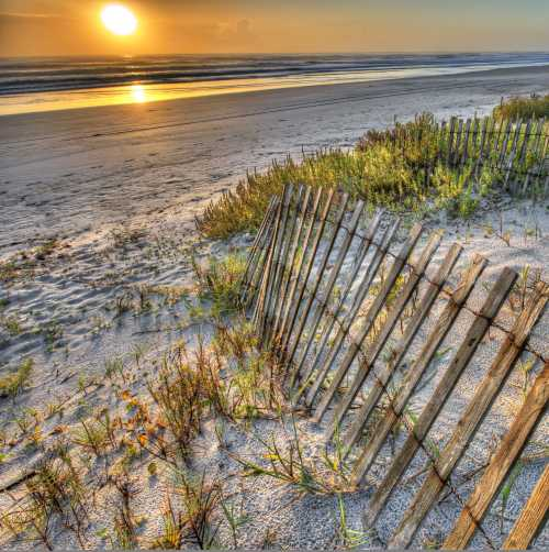 Tony Giese photo - beach with fence