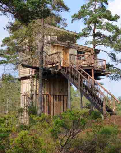 TreeTop Fiddan Wilderness Tower cabin in Lyngdal, Southern Norway