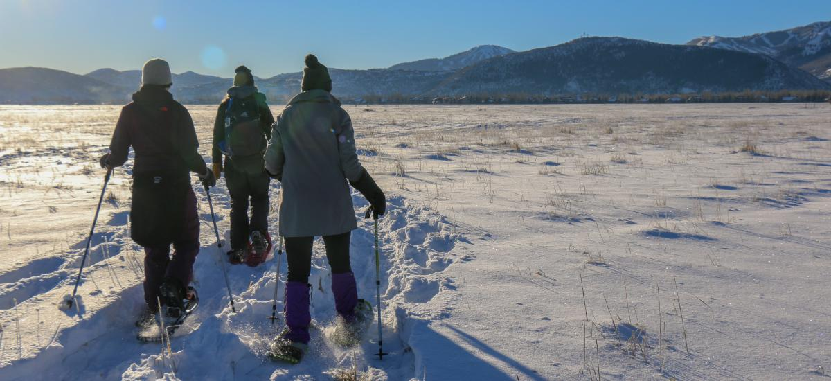 Three people Snowshoeing on the Swaner Preserve in the morning