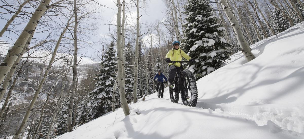 Snow biking in aspen trees